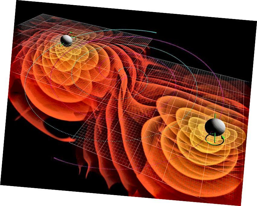 U posljednjim fazama prije spajanja, prostorno vrijeme koje okružuje par crnih rupa će se iskriviti, jer materija i dalje pada u obje crne rupe iz okruženja. Ni u kojem se trenutku ne čini da će išta imati priliku pobjeći iznutra prema van horizonta događaja. Kreditna slika: NASA / Ames istraživački centar / C. Henze.