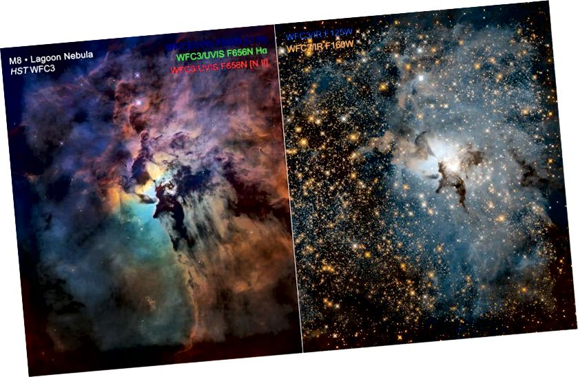Üksik koletislik täht Herschel 36 paistab nii eredalt kui 200 000 Päikest, mis on ühendatud Laguuni udukogu keskmesse. Kui nähtav valgus (L) näitab gaasi ja tolmu olemasolu erinevatel temperatuuridel ning koosneb erinevatest elementidest, siis paremal asuvas infrapunavaates kuvatakse tähtede uskumatut arvukust, mis on peidetud spektri nähtava osa hägususe taha. Need udus olevad tähed pole Hubble'i poolt juurdepääsetava lainepikkusega täielikult lahendatavad, kuid sinna pääseb James Webb. Massiivne täht Herschel 36 sureb tõenäoliselt enne, kui sees olevad tähed on isegi moodustumise lõpetanud. (NASA, ESA ja STSCI)
