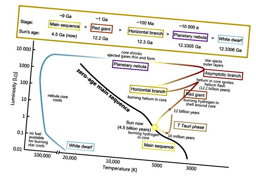 See diagramm näitab ühe päikesemassiivi tähe arengut HR-diagrammil alates selle põhijärjestuse faasist kuni sulandumise lõpuni. Iga massi täht järgib erinevat kõverust, kuid gaasipilve, millest saaks meie Päike, settimine ja sulandumine võtab miljonite aastate jooksul. (WIKIMEDIA ÜHINE KASUTAJA SZCZUREQ)