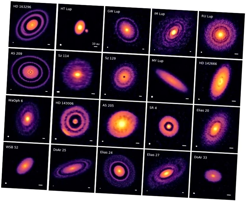 20 uut protoplanetaarset ketast, mille kujutiseks on ketta alamstruktuurid koostöös kõrgnurkse eraldusvõimega projektiga (DSHARP), näitab, millised näevad välja uued moodustuvad planeedisüsteemid. (SM ANDREWS ET AL. JA DSHARPI KOOSTÖÖ, ARXIV: 1812.04040)