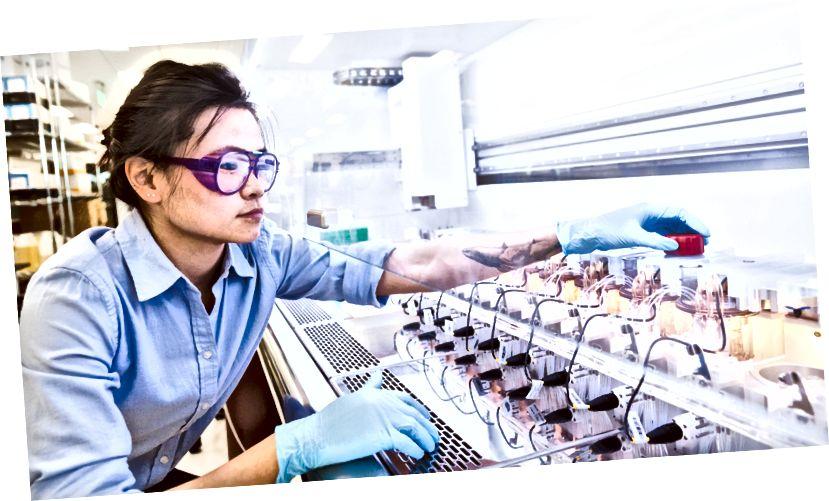 Insinyur fermentasi Ginkgo Bioworks Kar Mun Neoh bekerja di Bioworks2. Kredit gambar: Ginkgo Bioworks