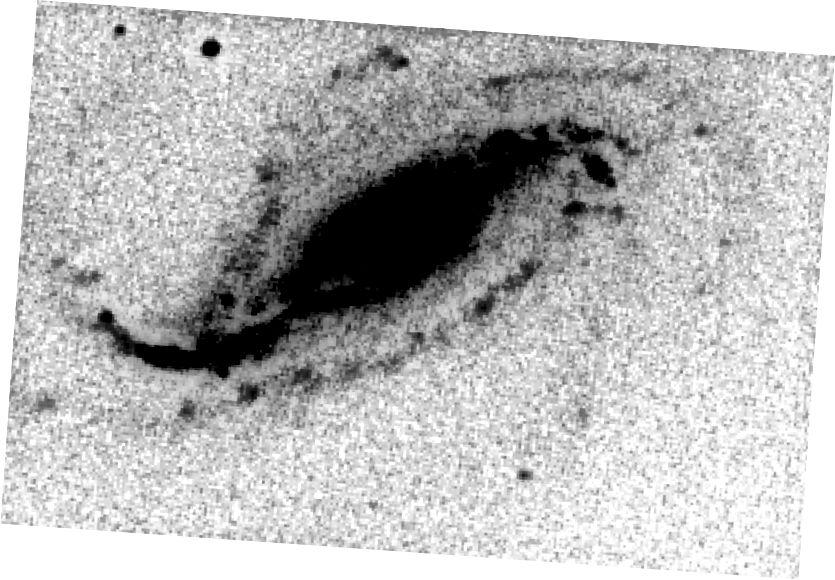 Ang mga larawang kinuha ni Victor Buso ay nagpapakita ng hitsura ng supernova SN 2016gkg. Ang supernova ay nasa ilalim ng kalawakan nang bahagya sa kanan ng sentro. Sina Victor Buso at Gaston Folatelli