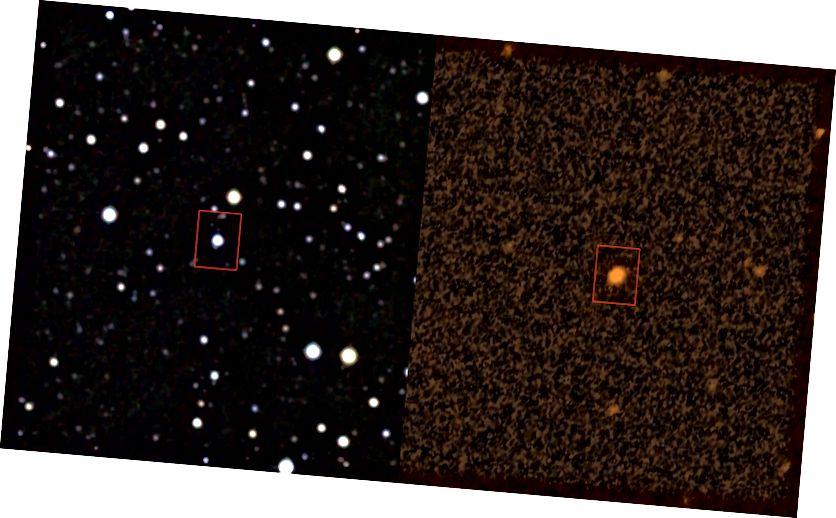 அகச்சிவப்பு மற்றும் புற ஊதாக்களில் KIC 8462852 என்ற நட்சத்திரம். படக் கடன்: அகச்சிவப்பு: ஐபிஏசி / நாசா (2 மாஸ்), இடதுபுறம்; புற ஊதா: வலதுபுறத்தில் STScI (GALEX).