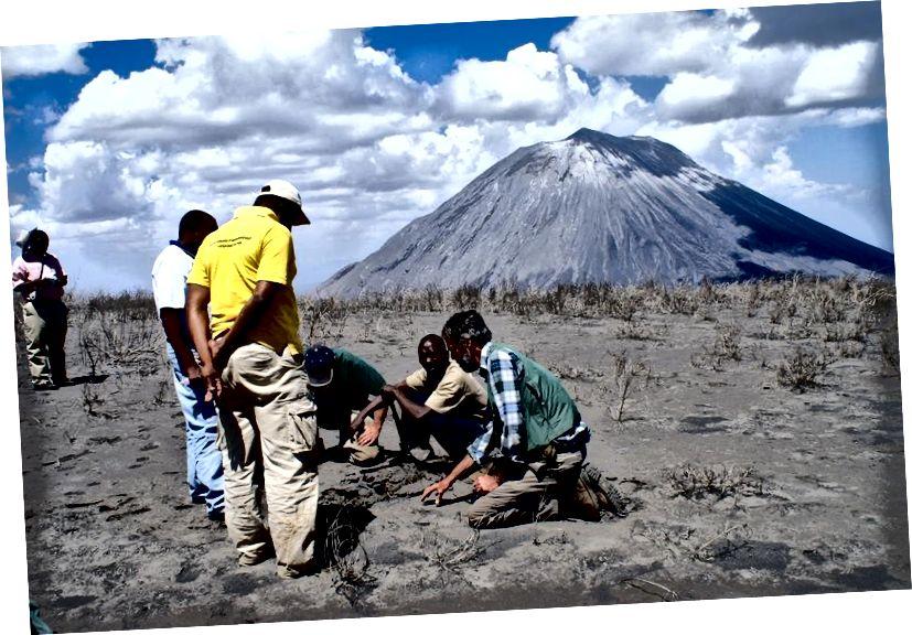 Учени, изучаващи пепелта от скорошно изригване на вулкана Ol Doinyo Lengai в Танзания. Кредит за изображение: Public Domain.