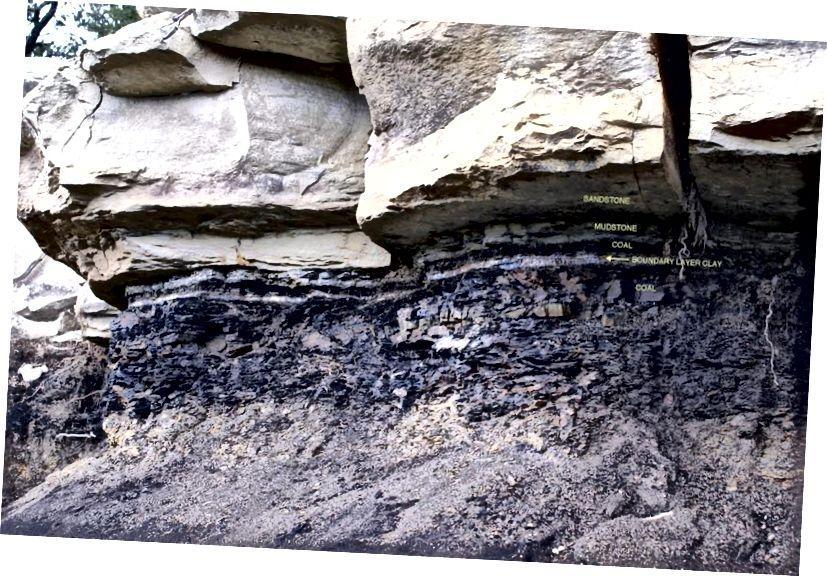 Ang layer ng hangganan ng Cretaceous-Paleogene ay napaka natatangi sa sedimentary rock, ngunit ito ay ang manipis na layer ng abo, at ang sangkap na sangkap nito, na nagtuturo sa amin tungkol sa extraterrestrial na pinagmulan ng epekto na nagdulot ng kaganapan ng pagkalipol ng masa. Credit ng larawan: James Van Gundy.