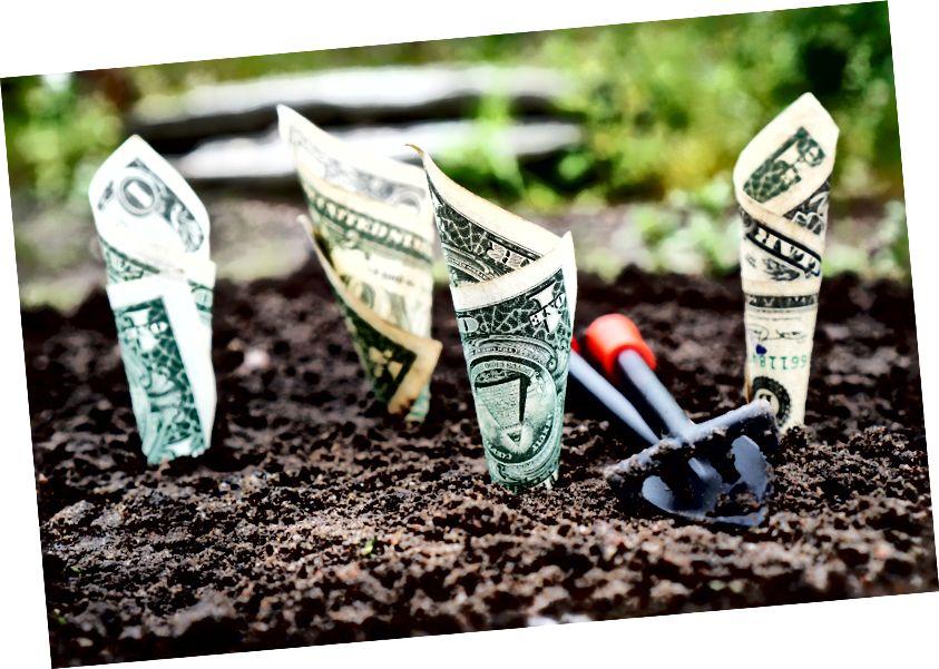 Nella foto: denaro proveniente da agricoltura biologica