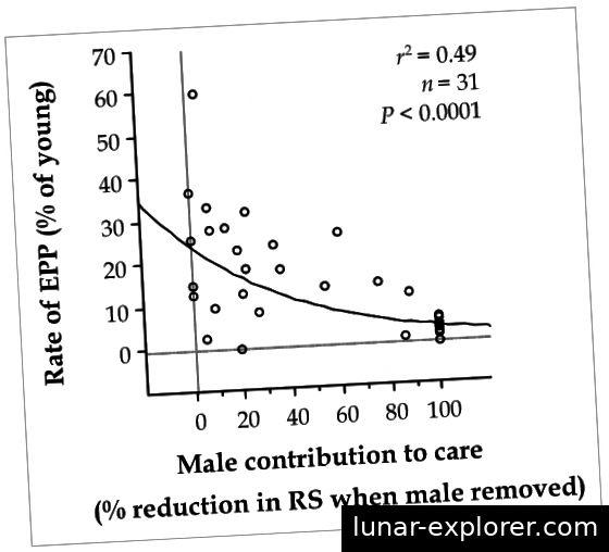 Hohe EPP-Raten korrelieren mit einem geringeren männlichen Beitrag zur Jugendbetreuung (Griffith 2008).