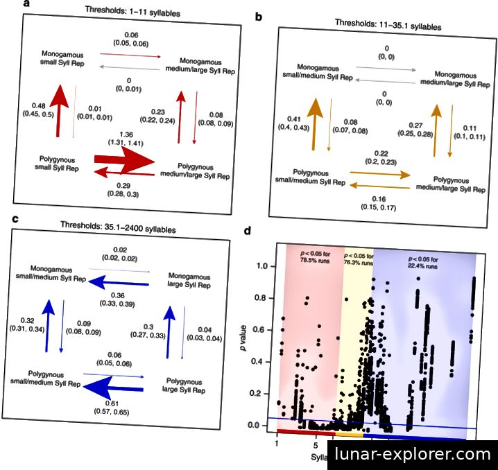 Diese Figur zeigt die Geschwindigkeit des evolutionären Übergangs zwischen verschiedenen Kombinationen von Silbenrepertoire und Paarungssystem. Es zeigt sich, dass Extreme im Silbenrepertoire in Kombination mit einem polygamen Paarungssystem evolutionär instabil erscheinen (Snyder 2019).