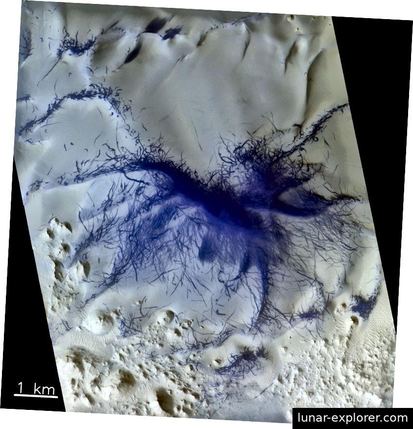 Die Marsoberfläche zeigt Muster, die sich aus der Konvergenz von Hunderten oder Tausenden Tornados innerhalb eines Bergrückens ergeben. Dieses Falschfarbenbild verdunkelt Bereiche, in denen der Marsboden blauer ist als die umliegende Region. Bildnachweis: ESA / Roscosmos / CaSSIS (CC)