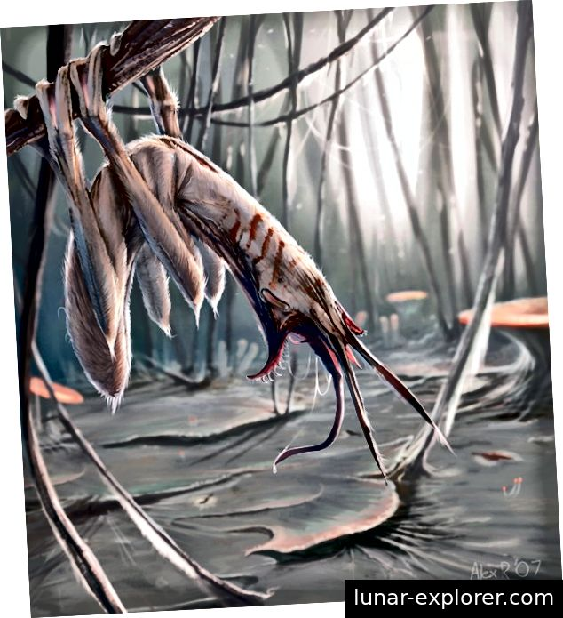 https://abiogenisis.deviantart.com/art/Bushwhacker-With-Background-52555664
