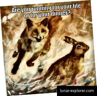 Laufen Sie um Ihr Leben oder um Ihr Abendessen?