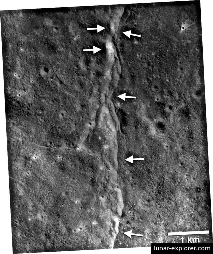 Dieser prominente Schubfehler ist einer von Tausenden, die vom Mondaufklärer (LRO) der NASA auf dem Mond entdeckt wurden. Diese Fehler ähneln kleinen treppenförmigen Klippen oder Narben von der Mondoberfläche aus. Die Steilküste entsteht, wenn ein Teil der Mondkruste (nach links zeigende Pfeile) über einen benachbarten Teil (nach rechts zeigende Pfeile) geschoben wird, während sich das Innere des Mondes abkühlt und schrumpft. Neue Untersuchungen deuten darauf hin, dass diese Fehler auch heute noch aktiv sein können (LROC-NAC-Frame M190844037LR; NASA / GSFC / Arizona State University / Smithsonian).