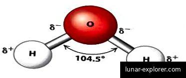 Abb. 2: Ein Wassermolekül. Der zentrale Sauerstoff ist leicht negativ, während die Wasserstoffatome leicht positiv sind [2]