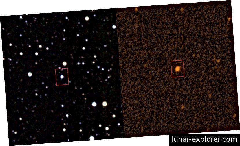Bilder von der NASA zeigen den Stern im Infrarot- und Ultraviolettbereich.