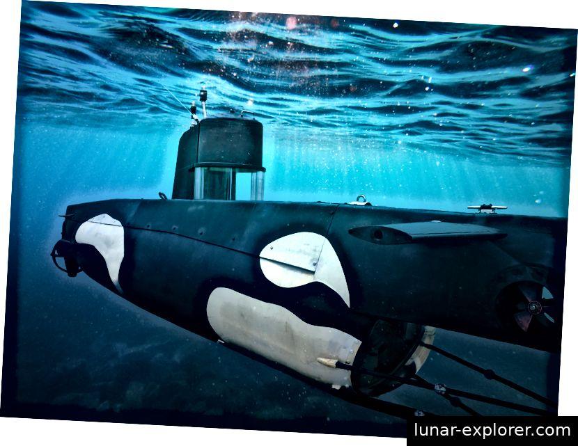 Noctiluca ist eines von zwei U-Booten, die Shanee Stopnitzky für das Community Submersibles Project öffnen will.