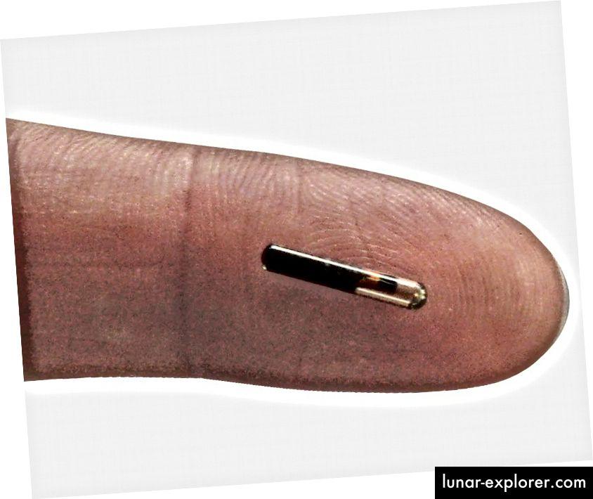 Ein mit medizinischem Silikon umhüllter RFID-Mikrochip, der direkt unter die menschliche Haut injiziert werden kann.