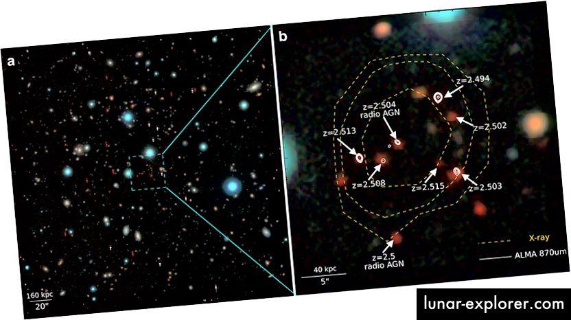 """Ein optisches / infrarotes Bild des Zentrums des CL J1001 aus der UltraVISTA-Umfrage von ESO. Das rechte Feld zeigt eine vergrößerte Ansicht mit den Rotverschiebungen der mit """"AGN"""" gekennzeichneten Galaxien und zwei Galaxien mit aktiv wachsenden schwarzen Löchern. Bildnachweis: Tao Wang."""