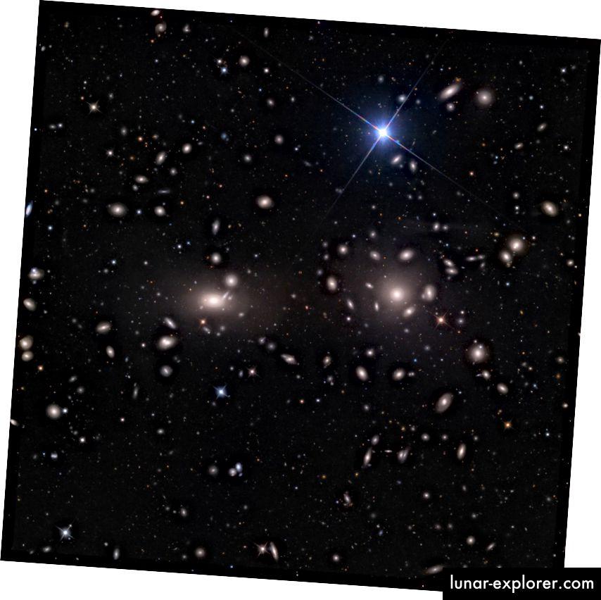 Der Koma-Galaxienhaufen, der dichteste und reichste Galaxienhaufen in der Nähe, nur 330 Millionen Lichtjahre entfernt. Bildnachweis: Adam Block / Mount Lemmon SkyCenter / Universität von Arizona, unter c.c.-by-s.a.-3.0.