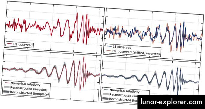 Das erste Gravitationswellenereignis, das jemals direkt erfasst wurde. Bildnachweis: Beobachtung von Gravitationswellen aus einer binären Schwarzlochfusion B. P. Abbott et al., (LIGO Scientific Collaboration und Virgo Collaboration), Physical Review Letters 116, 061102 (2016).