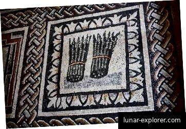 Ein altes römisches Mosaik über jedermanns Lieblingsgemüse.