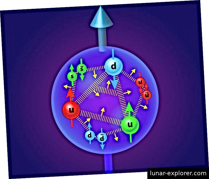 Die drei Valenzquarks eines Protons tragen zu seinem Spin bei, aber auch die Gluonen, Seequarks und Antiquarks sowie der Bahndrehimpuls. Bildnachweis: APS / Alan Stonebraker.