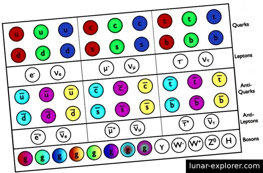 Fermioni (kvarkovi i gluoni), antifermioni (antikvarkovi i antileptoni), svi centrifugi = 1/2, i bozoni (od cijelog spina) standardnog modela, svi su prikazani zajedno. Kreditna slika: E. Siegel.