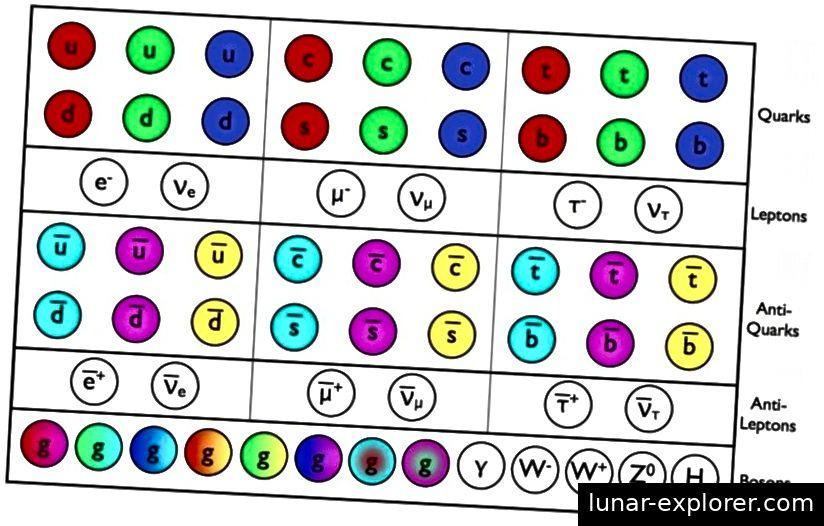 Die Fermionen (Quarks und Gluonen), Antifermionen (Antiquarks und Antileptonen), alle Spin = 1/2, und die Bosonen (von ganzzahligem Spin) des Standardmodells, alle zusammen gezeigt. Bildnachweis: E. Siegel.