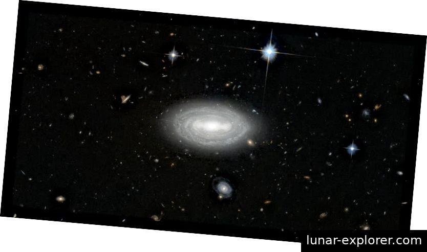 Die einsamste Galaxie im Universum, die seit 100 Millionen Lichtjahren in keiner Richtung andere Galaxien in ihrer Nähe hat. Dies ist jedoch keine echte Verwirklichung des leeren Raums. Bildnachweis: ESA / Hubble & NASA und N. Gorin (STScI); Danksagung: Judy Schmidt.