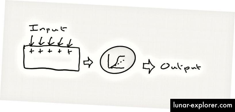 ديجا فو. يعمل فرع الشجرة المفردة كجهاز صغير لتلخيص المدخلات وإعطاء الإخراج إذا كانت المدخلات كافية نشطة في نفس الوقت. والتحول من الإدخال إلى الإخراج (الدائرة الرمادية) هو فقط الرسم البياني الذي رأيناه بالفعل أعلاه ، والذي يعطي حجم الاستجابة من عدد المدخلات.