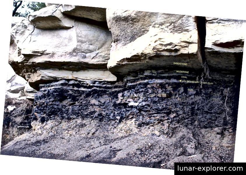 Granični sloj krede-paleogena vrlo je različit u sedimentnoj stijeni, ali tanki sloj pepela i njegov elementarni sastav uči nas o izvanzemaljskom podrijetlu udarca koji je uzrokovao masovno izumiranje. (James Van Gundy)