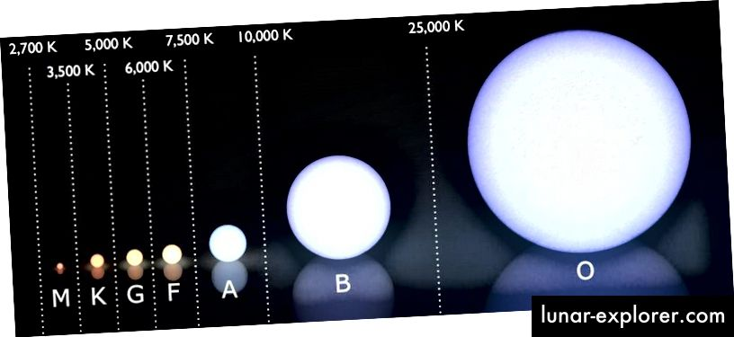 (Moderni) Morgan-Keenanov spektralni sustav klasifikacije, s temperaturnim rasponom svake klase zvijezda prikazanom iznad njega, u kelvinima. Velika većina (75%) zvijezda danas su zvijezde M klase, a samo je 1 do 800 dovoljno masivno za supernovu. Iako su vruće poput O-zvijezda, one nisu najtoplije zvijezde u cijelom Svemiru; postoje neke posebne koje spadaju među najrjeđe zvijezde svih. (Korisnik Wikimedia Commons LucasVB, dodaci E. Siegel)