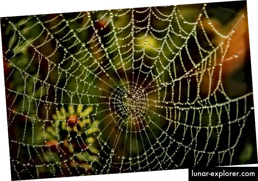 Der Graph (Netzwerk von Eckpunkten, die über Kanten verbunden sind) ist eine intuitive Möglichkeit, unser Universum zu modellieren.