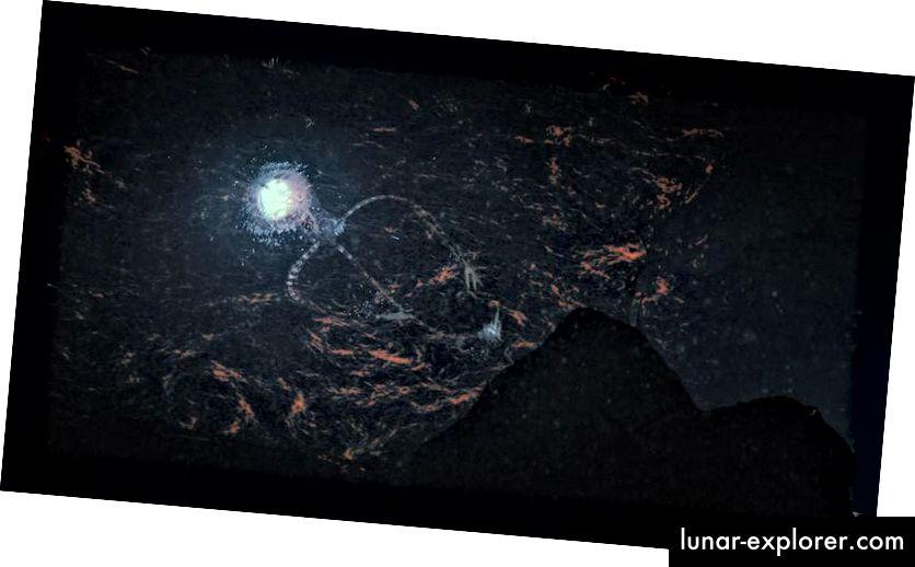 Ilustracija zamišljenog vanzemaljca Europa Octo koji pliva iz stijene. Europa, mjesec koji kruži oko planeta Jupiter, često se smatra najvećim kandidatom svijeta u našem Sunčevom sustavu izvan Zemlje za život. Iako može biti potencijalno opasan za nas, to nije nužno zbog zlobnih namjera. (Lwp Kommunikáció / flickr)