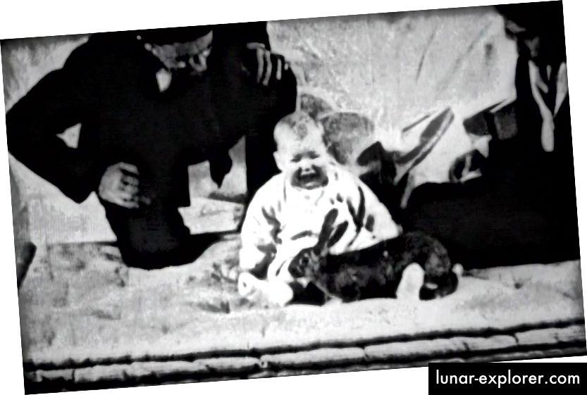فيلم لا يزال من تجربة ليتل ألبرت يظهر الطفل ألبرت مع أرنب ، يحيط به الدكتور جون واتسون وروزالي راينر. (ويكيميديا)