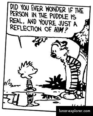Calvin und Hobbes von Bill Watterson
