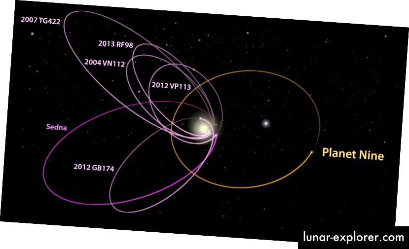 Ein Diagramm der Umlaufbahnen der ausgerichteten KBOs, die vorgeschlagene Umlaufbahn des Planeten 9 ist in orange dargestellt.