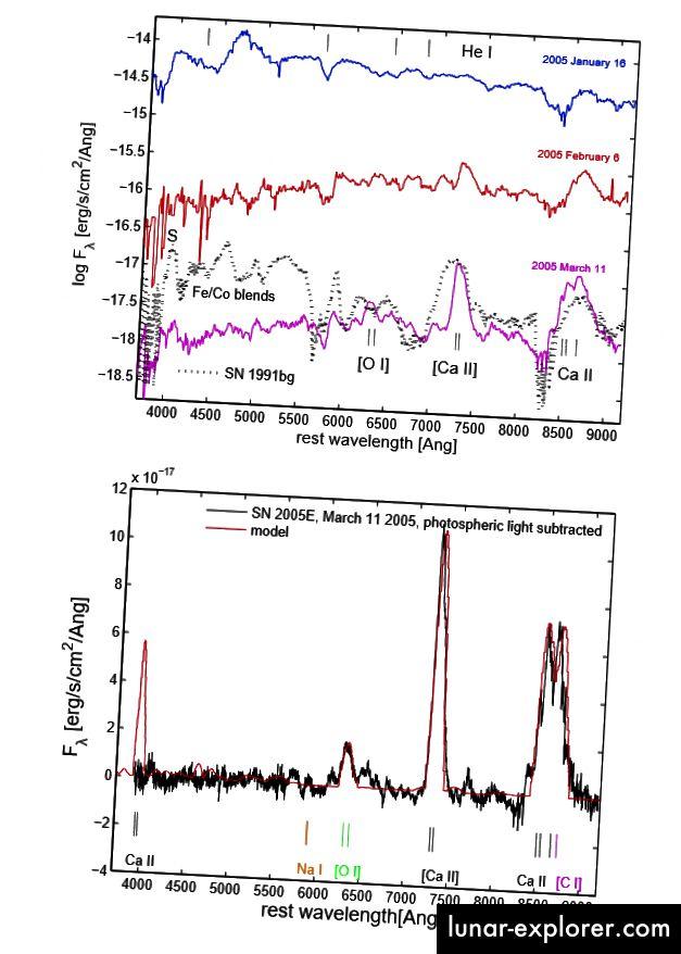 Fig. 2, Perets et al. Die starken Calciumlinien sind in diesen Spektren von SN 2005E deutlich, was darauf hinweist, dass etwa 0,135 solare Calciummassen ausgestoßen wurden.