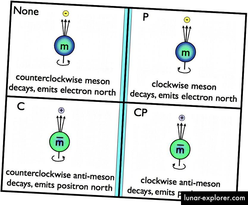 Normalni mezon vrti se u smjeru suprotnom od kazaljke na satu oko svog Sjevernog pola, a zatim propada, a elektron se emitira duž smjera Sjevernog pola. Primjena C-simetrije zamjenjuje čestice anti česticama, što znači da bi se antimeon trebao vrtjeti u smjeru suprotnom od kazaljke na satu oko njegovog raspada Sjevernog pola emitirajući pozitroni u smjeru Sjever. Slično tome, P-simetrija vrti ono što vidimo u ogledalu. Ako se čestice i antičestice ne ponašaju potpuno isto u C, P ili CP simetriji, kaže se da je ta simetrija narušena. Do sada, samo slaba interakcija krši bilo koju od ove tri. (E. SIEGEL / BEZ GALAKSE)
