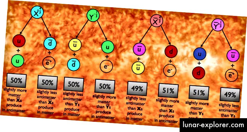 Ako dopustimo X i Y česticama da propadnu u prikazane kombinacije kvarkova i leptona, njihovi će se parovi protiv čestica raspadati u odgovarajuće kombinacije anti čestica. Ali ako je kršen CP, putevi propadanja - ili postotak čestica koje propadaju jednosmjerno prema drugom - mogu biti različiti za čestice X i Y u usporedbi s česticama anti-X i anti-Y, što rezultira neto proizvodnjom bariona antibarijoni i leptoni nad antileptonima. (E. SIEGEL / BEZ GALAKSE)