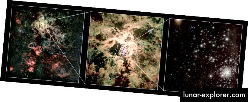 Cluster RMC 136 (R136) di Nebula Tarantula di Awan Magellan Besar, adalah rumah bagi bintang-bintang paling masif yang dikenal. R136a1, yang terbesar di antara semuanya, adalah lebih dari 250 kali massa Matahari (Eropa OBSERVATORI SELATAN SELATAN / P. CROWTHER / C. J. EVAN)
