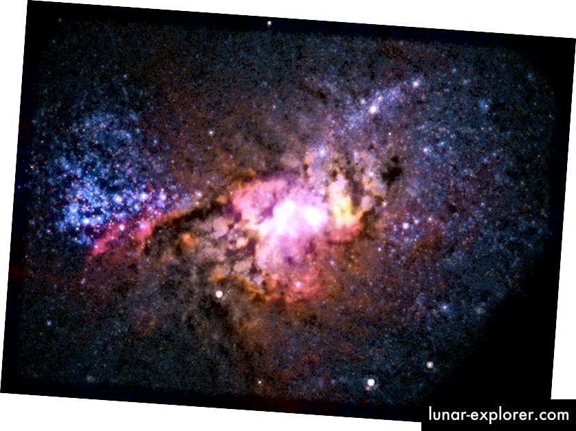 Wenn es im Universum zu größeren Zusammenschlüssen von Galaxien ähnlicher Größe kommt, bilden sie aus dem darin enthaltenen Wasserstoff- und Heliumgas neue Sterne. Dies kann zu stark erhöhten Sternentstehungsraten führen, ähnlich wie wir es in der nahe gelegenen Galaxie Henize 2–10 beobachten, die 30 Millionen Lichtjahre entfernt ist. (RÖNTGEN (NASA / CXC / VIRGINIA / A.REINES ET AL); RADIO (NRAO / AUI / NSF); OPTICAL (NASA / STSCI))
