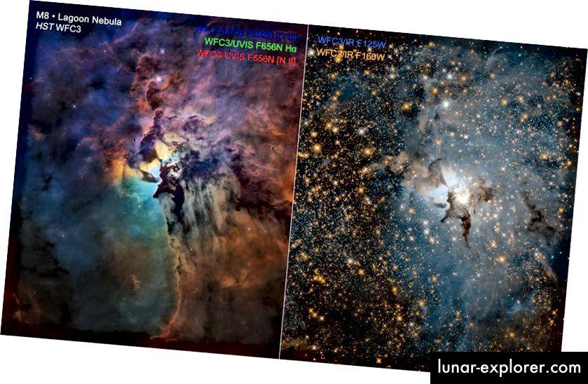 Ein einziger monströser Stern, Herschel 36, scheint so hell wie 200.000 Sonnen im Herzen des Lagunennebels. Während sichtbares Licht (L) das Vorhandensein von Gas und Staub bei verschiedenen Temperaturen und aus verschiedenen Elementen besteht, zeigt die Infrarotansicht rechts die unglaubliche Menge an Sternen, die sich im sichtbaren Teil des Spektrums hinter dem Nebel verstecken. Diese Sterne im Nebel können von Hubble bei den zugänglichen Wellenlängen nicht vollständig aufgelöst werden, aber James Webb wird dorthin gelangen. Der massive Stern Herschel 36 wird wahrscheinlich sterben, bevor sich die Sterne im Inneren überhaupt gebildet haben. (NASA, ESA UND STSCI)