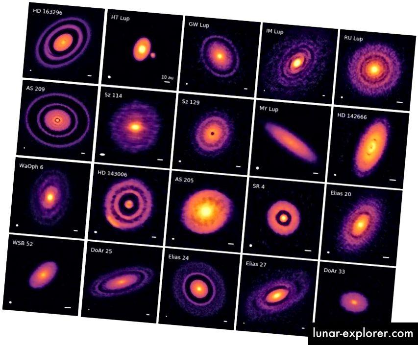 20 neue protoplanetare Scheiben, wie sie im Rahmen des DSHARP-Projekts (Disk Substructures at High Angular Resolution Project) abgebildet wurden, zeigen, wie neu entstehende Planetensysteme aussehen. (S. M. ANDREWS ET AL. UND DIE DSHARP-ZUSAMMENARBEIT, ARXIV: 1812.04040)