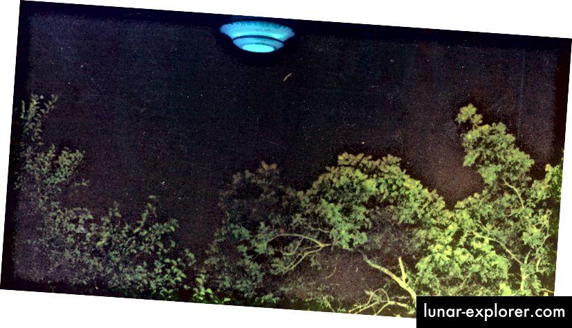 Možda postoji dobar razlog za Veliku tišinu. Slika Troy Moon.