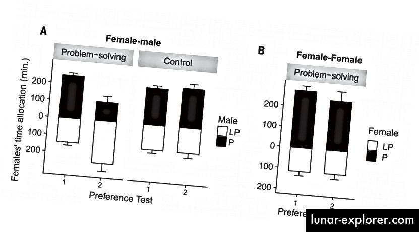 Фиг. 2. Време, прекарано от фокусни жени в близост до предпочитани и по-малко предпочитани индивиди (средно ± SEM). Времето, прекарано в близост до (A) мъже (експеримент 1) и (B) жени (експеримент 2). Наблюдението на по-малко предпочитани мъже демонстранти, които отварят проблемни кутии, доведе до значително изместване на предпочитанията към тези мъже. Не е установена значителна промяна в предпочитанията в контролната група или в групата жени-жени. P, за предпочитане; LP, по-малко предпочитани. (Doi: 10.1126 / science.aau8181)