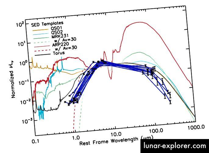Figura 5, Wu et al. I modelli SED vengono visualizzati rispetto ai dati effettivi per i candidati osservati W12drops (punti neri collegati da linee blu). Il toro della polvere si adatta bene ad eccezione di lunghezze d'onda basse.