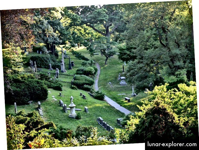 في المدن الكبيرة ، غالبًا ما تكون المقابر محميات طبيعية تمس الحاجة إليها. الصورة: مجاملة جبل أوبورن المقبرة