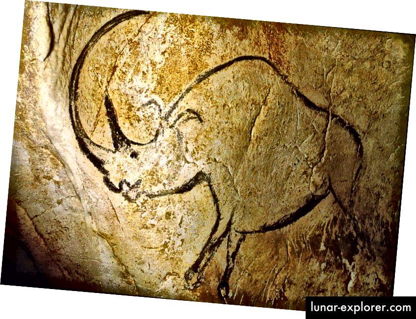 Vallon-Pont-d'Arci koobastes asuvad paljud vanimad maalid: inimeste joonistatud loomade kujutised. Siin on kujutatud suure kumera sarvega ninasarvikut. Vanimad sellest koopast leitud illustratsioonid on rohkem kui 30 000 aastat vanad. (CHAUVET CAVE, ARDÈCHE, PRANTSUSMAA / AVALIK DOMAIN)