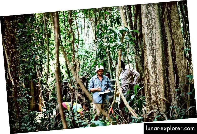 Dr. Aaron Davis entreprenant des recherches sur le café Arabica au Sud-Soudan. Photo: Emma Sage