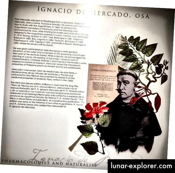 Fray Ignacio Mercado dokumentirao je ljekovita svojstva endemske flore na Filipinima.
